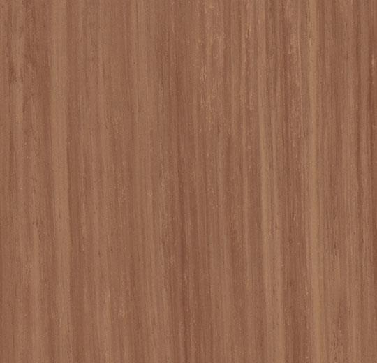 fresh walnut