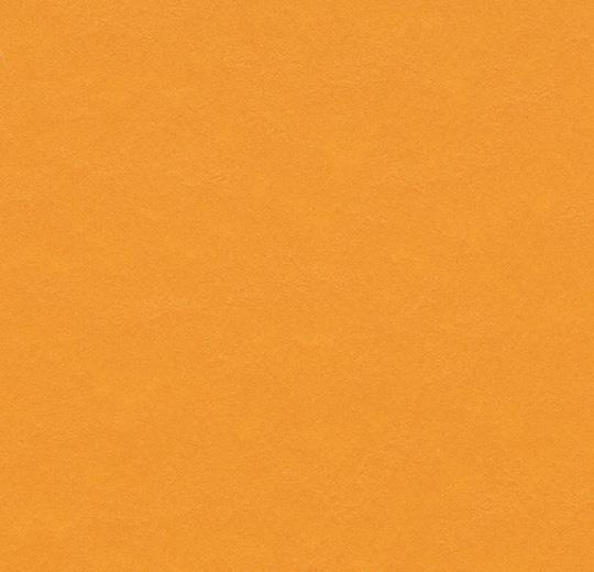 PUMPKIN YELLOW t3354